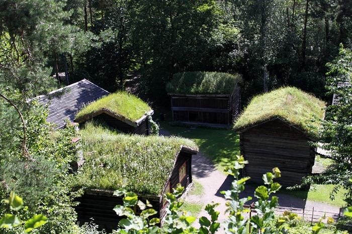 Bajkoviti zeleni krovovi Norveške (5)