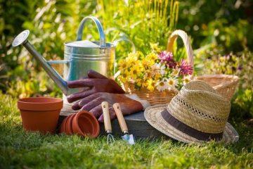 Priprema zemlje za sadnju