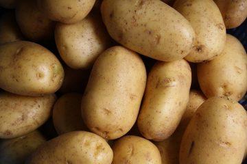 """Zašto dolazi do """"zaslađivanja"""" krompira?"""