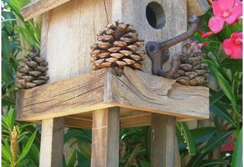 Kako napraviti kućicu za ptice i hranilicu?